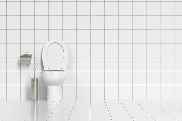 installation-wc-bordeaux-et-alentours-33-sovea-bordeaux